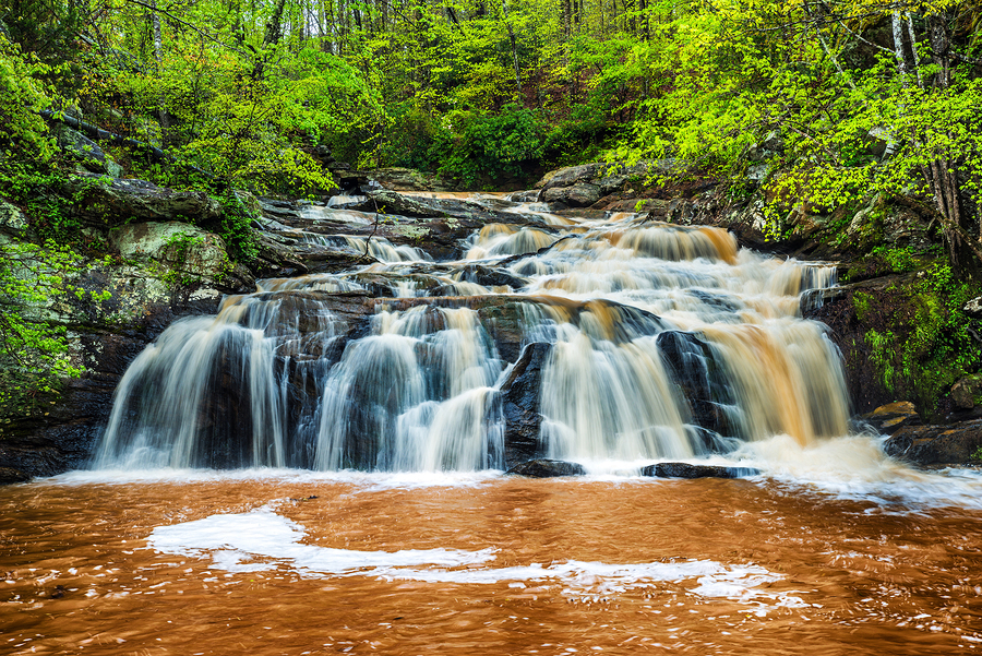Waterfall in mountains near Atlanta  by  Rob Hainer