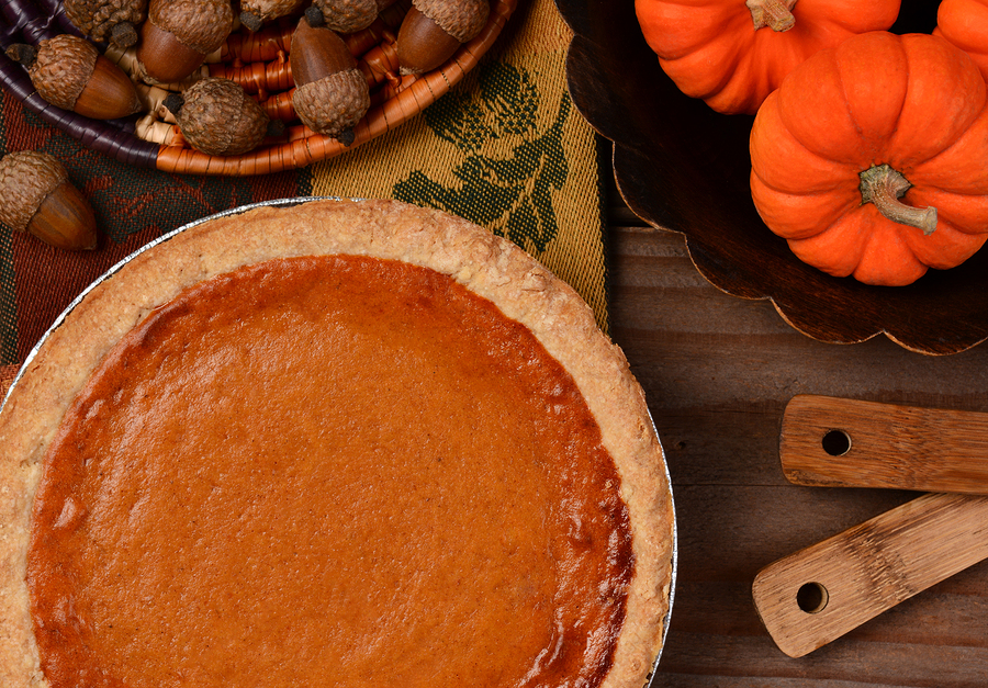 Pumpkin Pie by SCPhotog