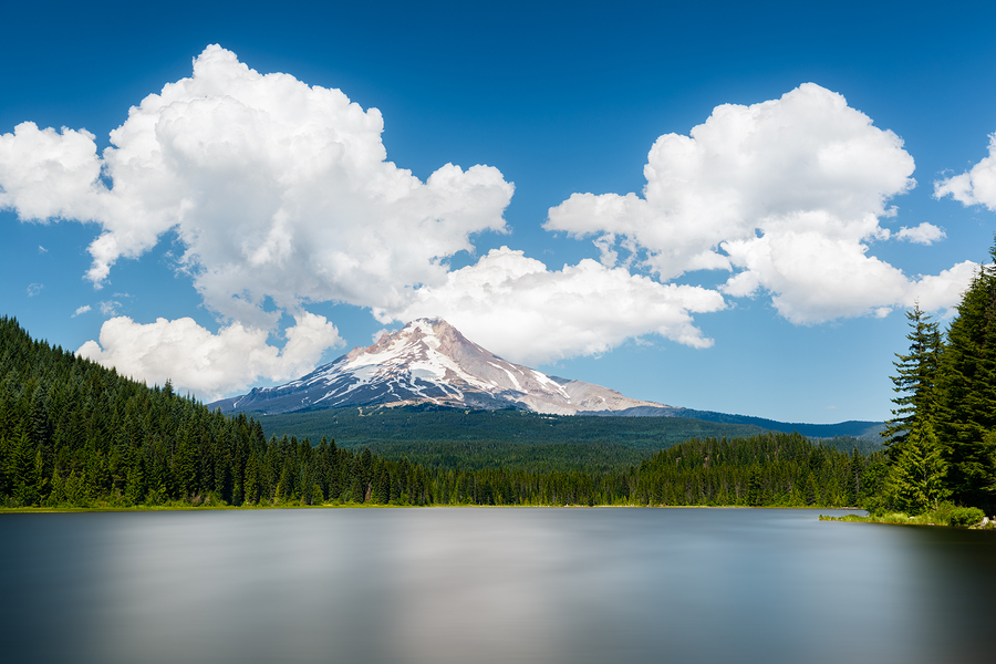 beboy  | Mount Hood from Trillium Lake