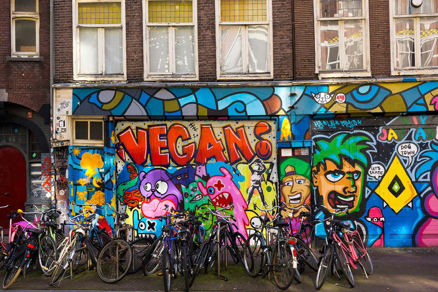 Image of bikes in front of graffiti  by  toxawww    The lively colors and artistry of Amsterdam's street art scene is one of the city's benchmarks. It's also one of the most pleasant discoveries to come across on a bike tour!