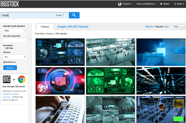 """Screenshot image of Bigstock search page for """"data."""""""
