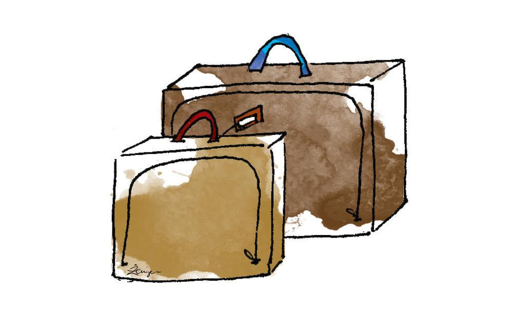 SGI Suitcases.jpg