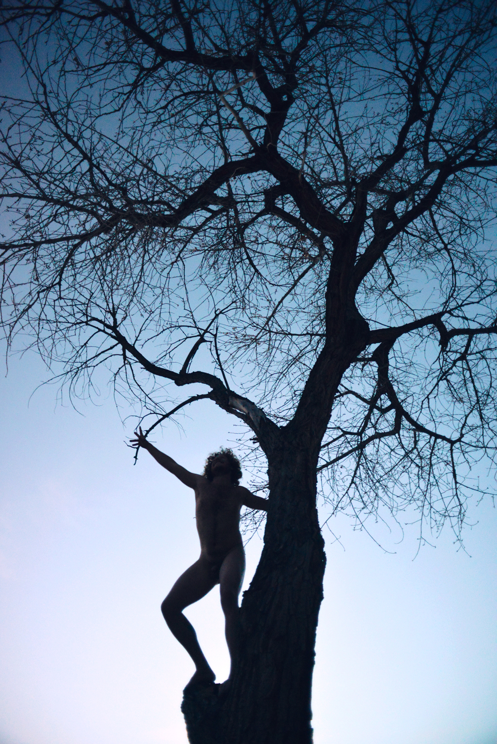 alex-nude-tree.jpg