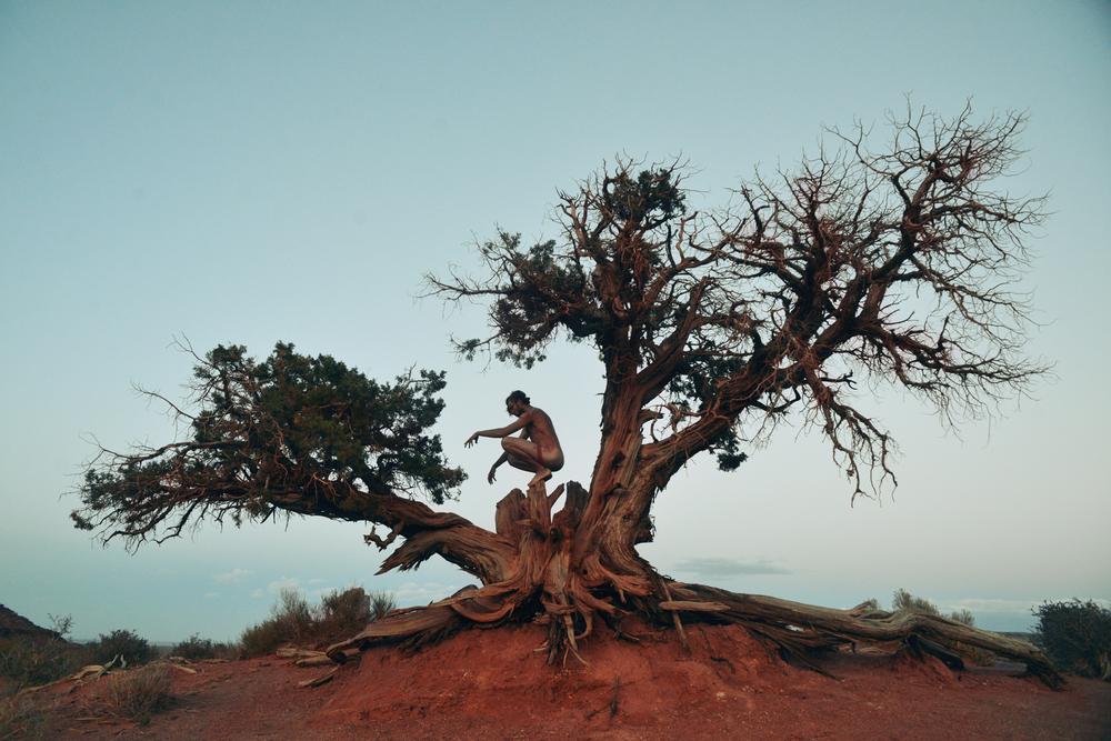 dawid-monument-valley-tree-god.jpg