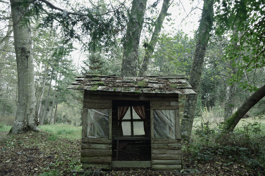 cori storb little house.jpg