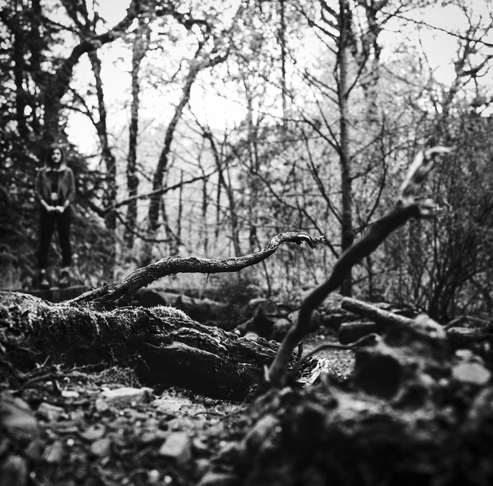 Landscapeish (1 of 1)-2.jpg