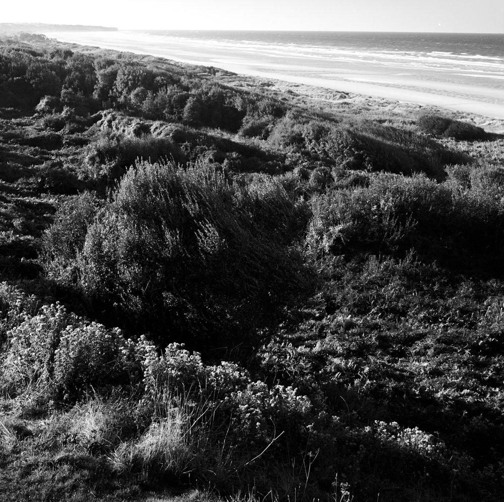 Normandy-41.jpg