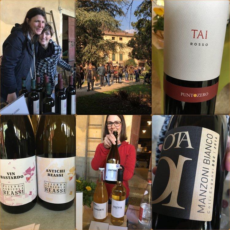 Il Vino è donna: vino, cucina e territorio al femminile — Soavemente