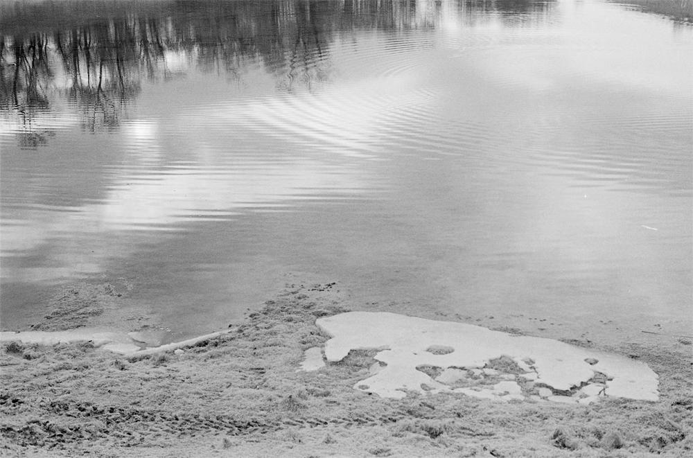 pond2.jpg