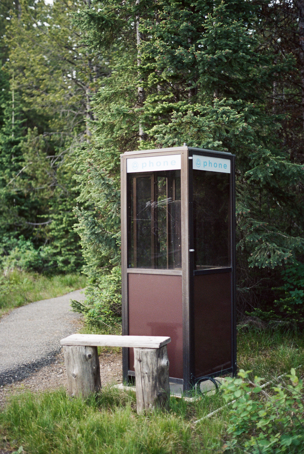 Phone booth in the woods...