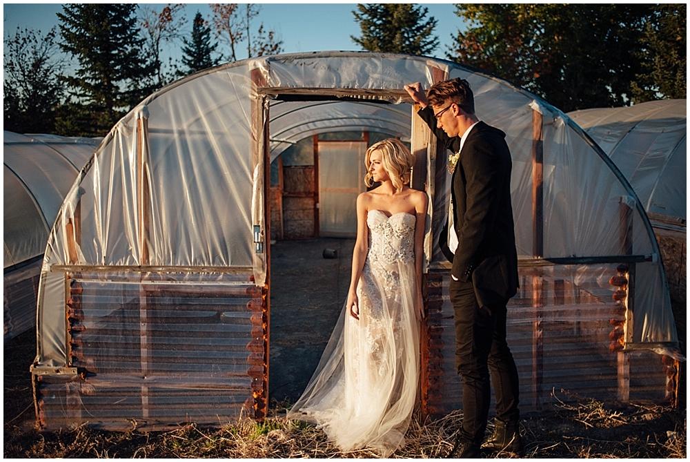 Fantastic mr fox Wedding-7593.jpg