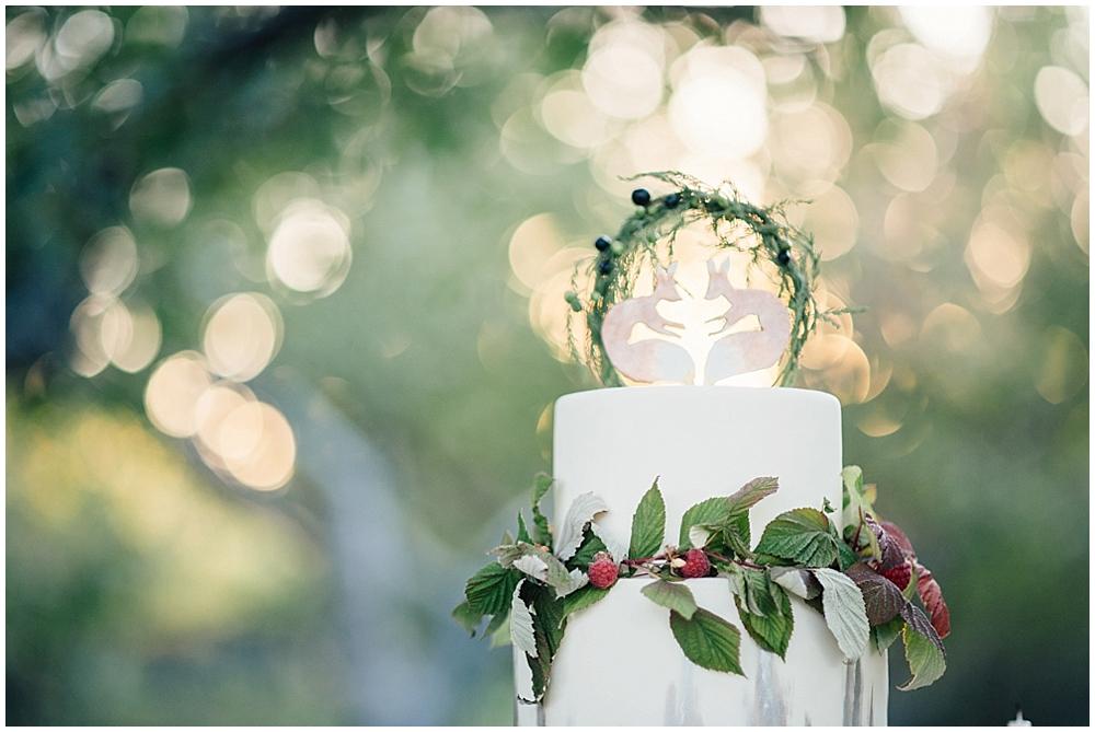 Fantastic mr fox Wedding-7629.jpg