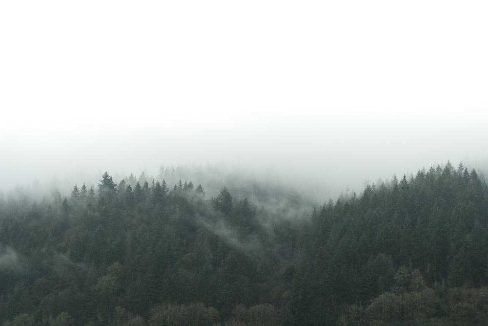Portland-066.jpg