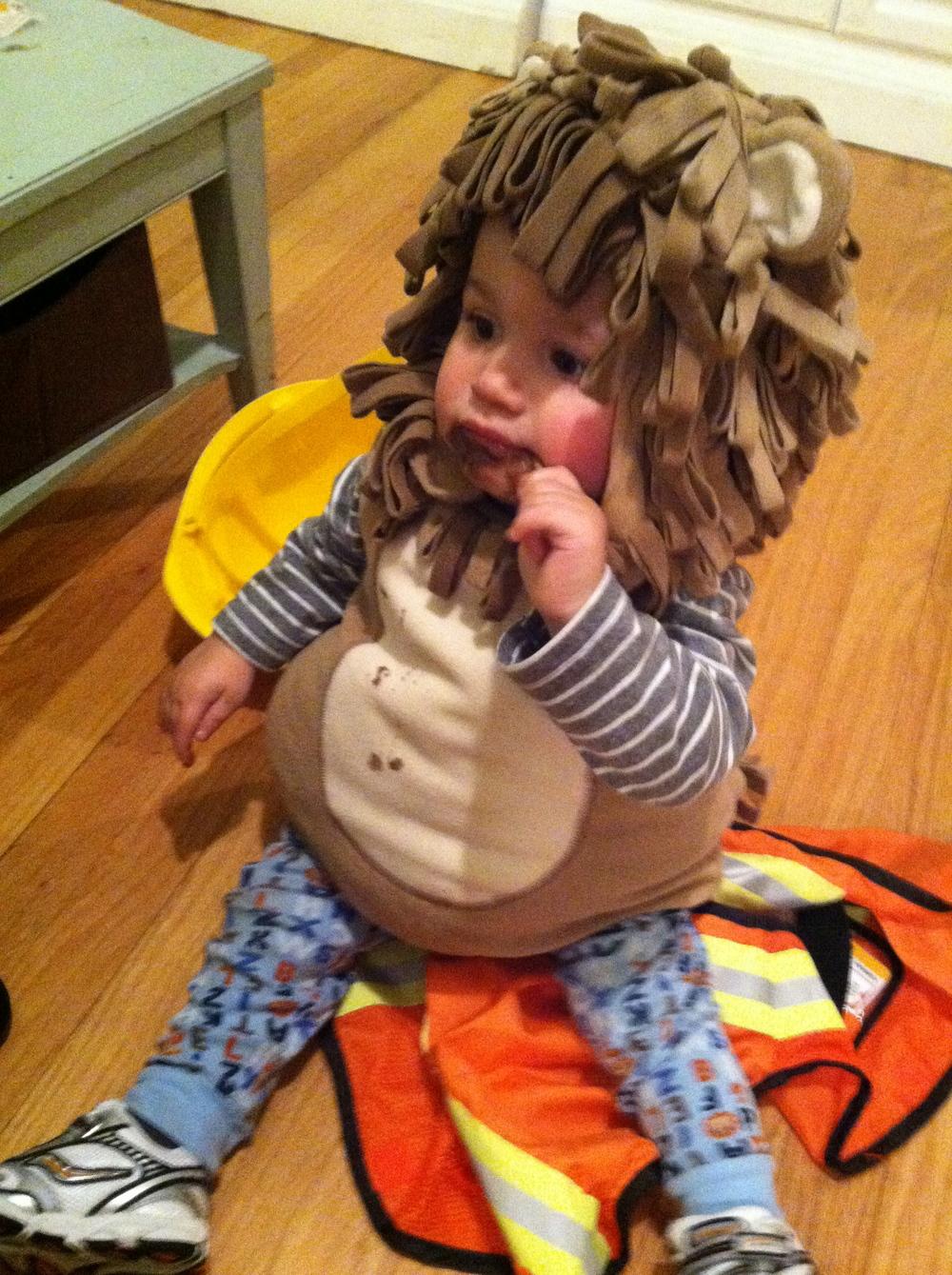 Judah and his Craigslist lion costume.