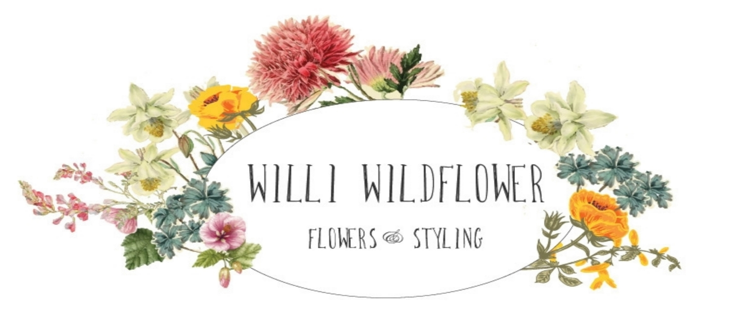 Willi Wildflower