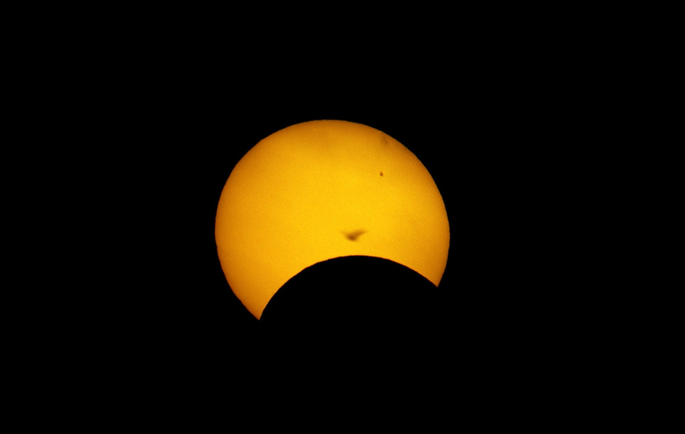 Solar Eclipse with Bird