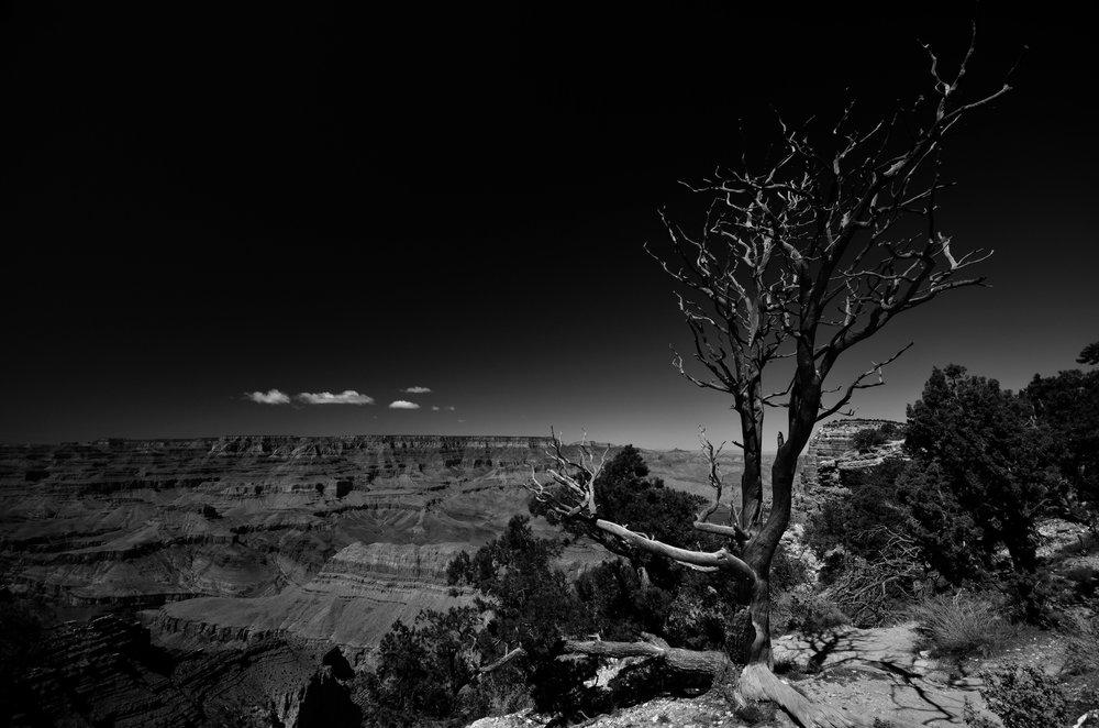 Grand Canyon (B&W)