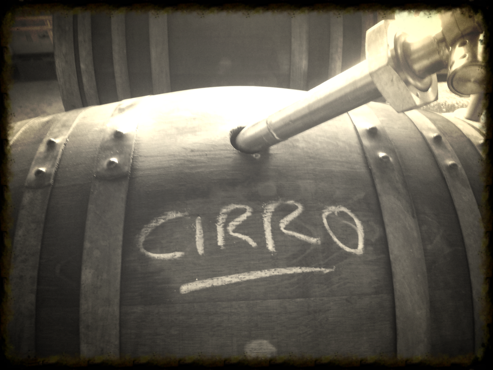 Sauvignon Blanc grape juice being put into old chardonnay barrels. The grape juice will ferment in these with wild yeasts and the subsequent wine will mature for around 6 months inside them.