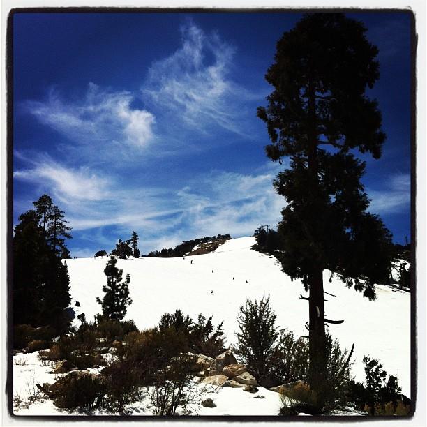 Slopes :) (Taken with  Instagram  at Bear Mountain Ski Resort)