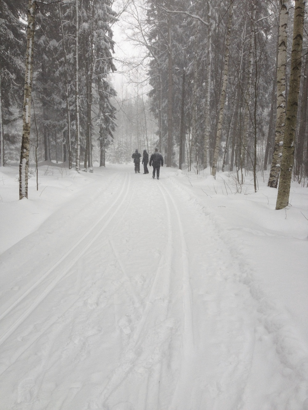 A ski path through the trees. This was taken near Helsinki on Christmas Day 2012, a perfect white Christmas.