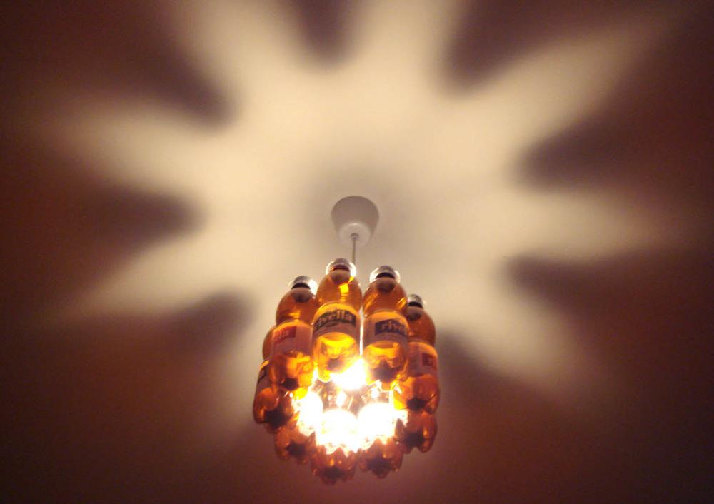 petlight_01720_1020.jpg