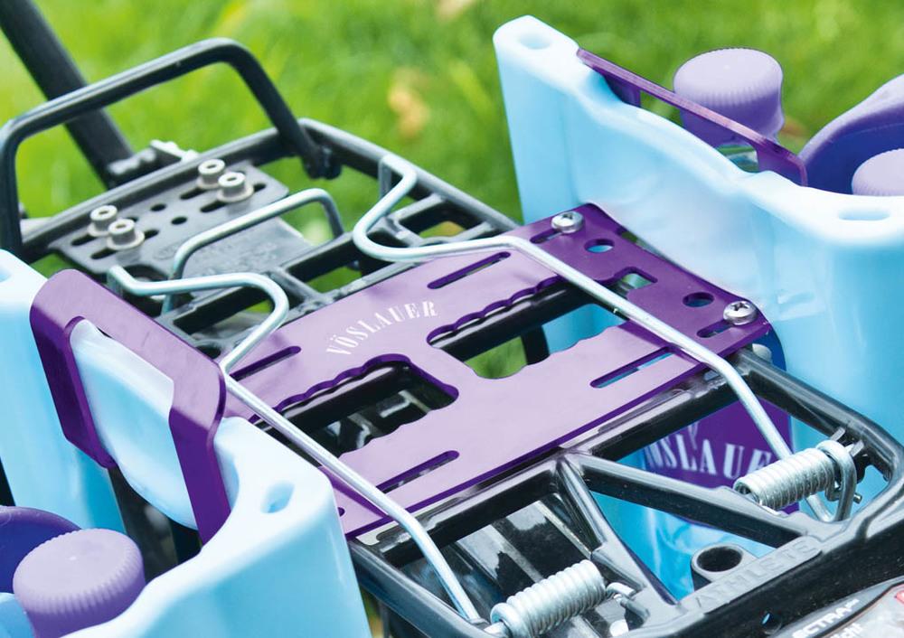 VoeS_FH_0976_violet_1020.jpg