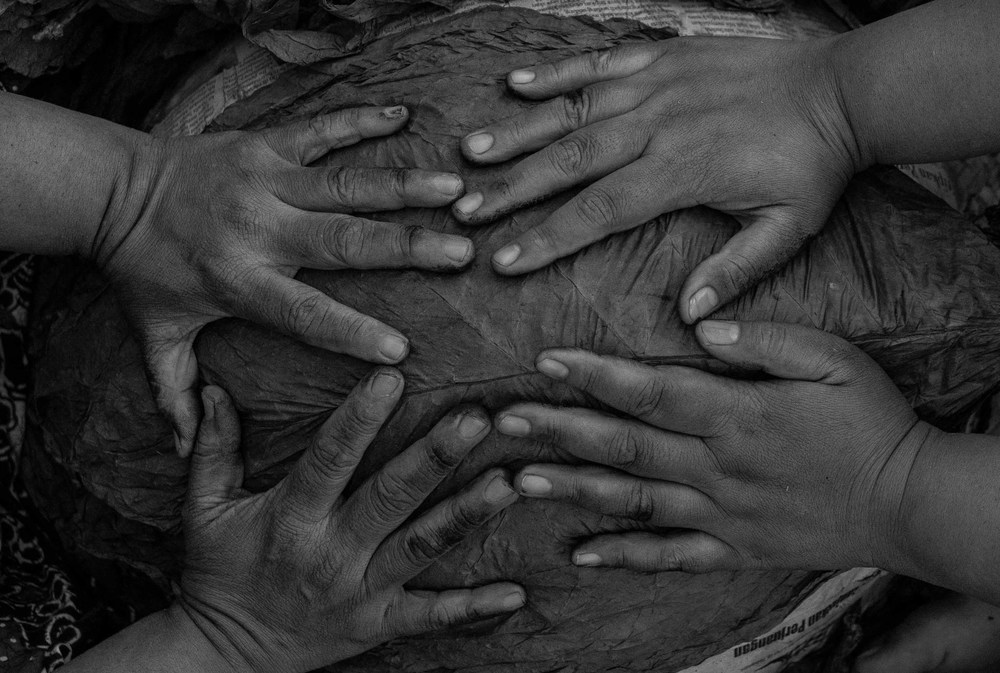 Hands of Indonesian Tobacco workers in East Java shot at 75mm f/2.8 max aperture