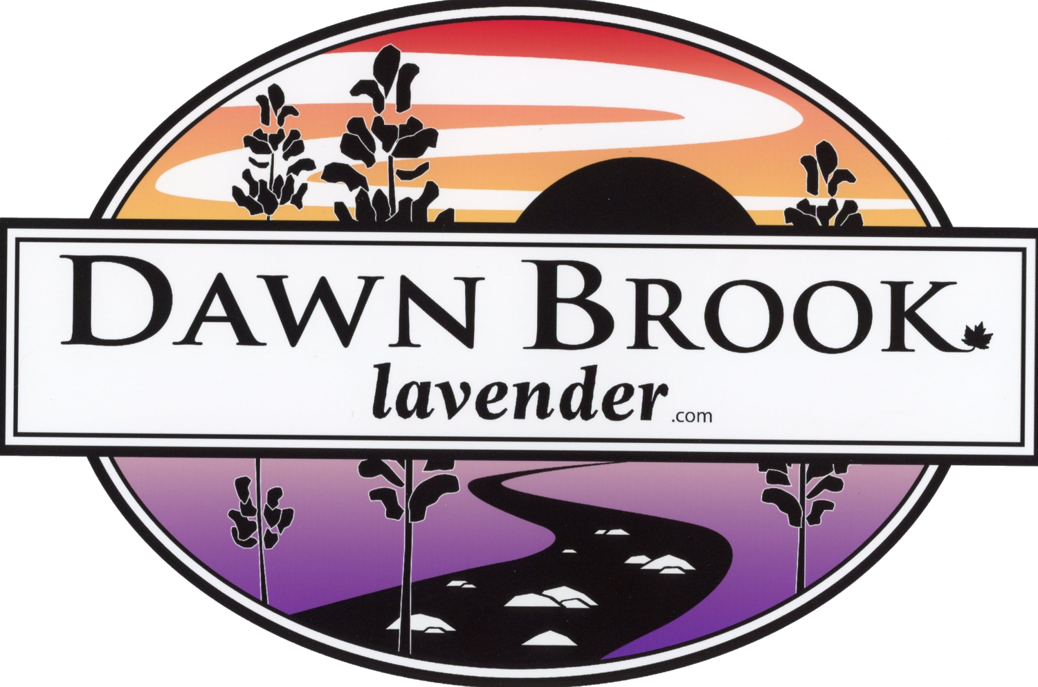 Dawn Brook Lavender