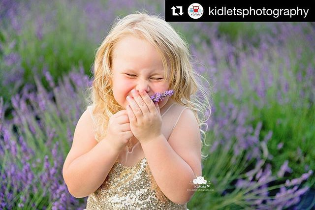 We love lavender this much too!!! #Repost @kidletsphotography ・・・ It really does smell THAT good! #kidletsphotography #orangevillephotographer #shelburnephotographer #dundalkphotographer #allistonphotographer #collingwoodphotographer #landver #lavenderfeilds #smellssooogood #childpjotographer #dawnbrooklavender