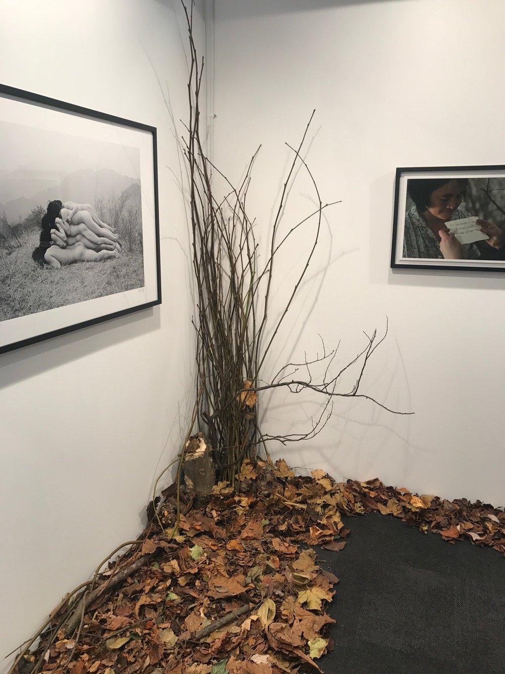 hamni gallery 2.JPG