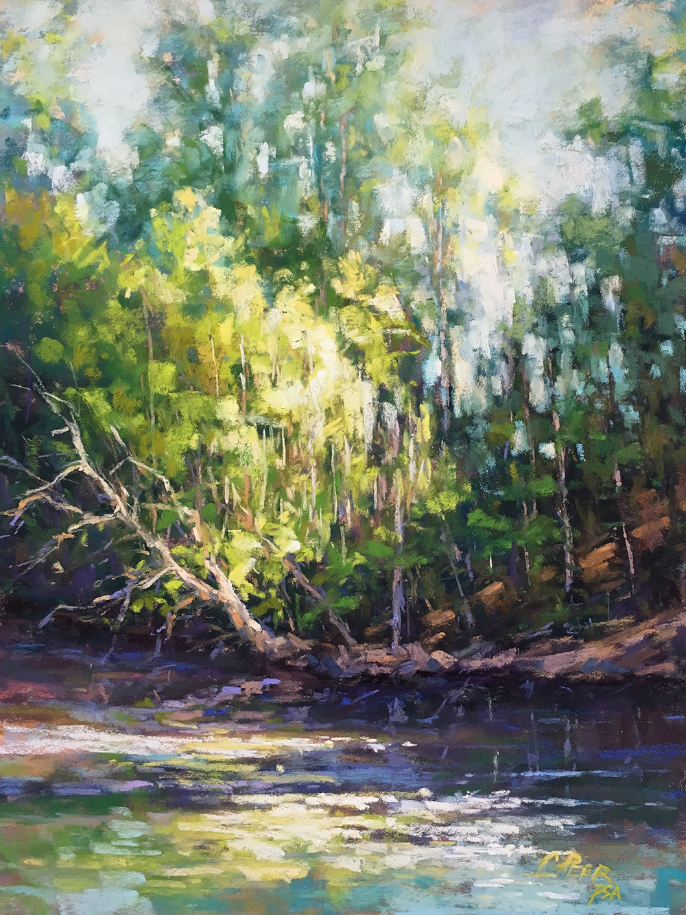 Morning Light on the Creek Bank