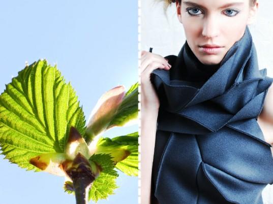 biomimicry-fashion-diana-eng-scarf-537x402.jpg