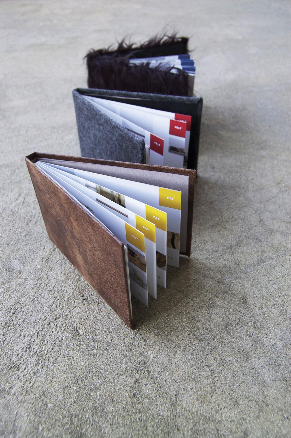 Beuys-3.jpg