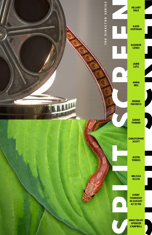 SplitScreen_Poster_11x17_3.jpg