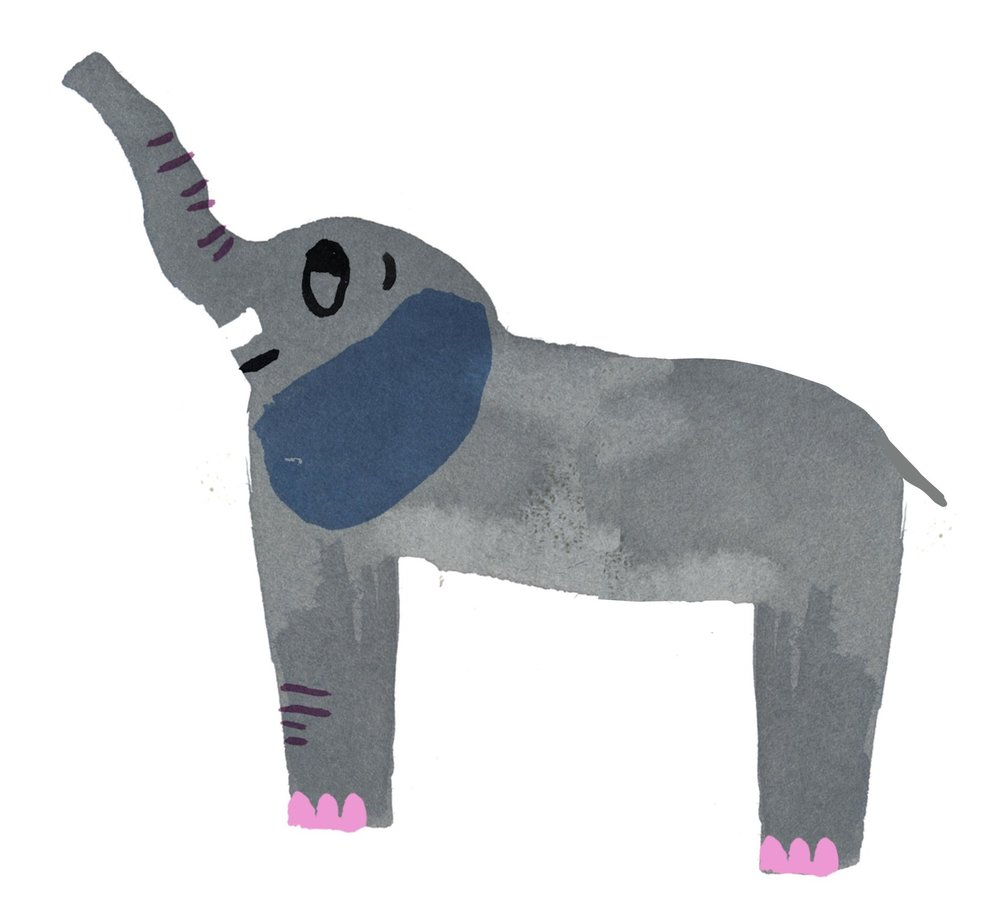 Unpublished personal elephant.