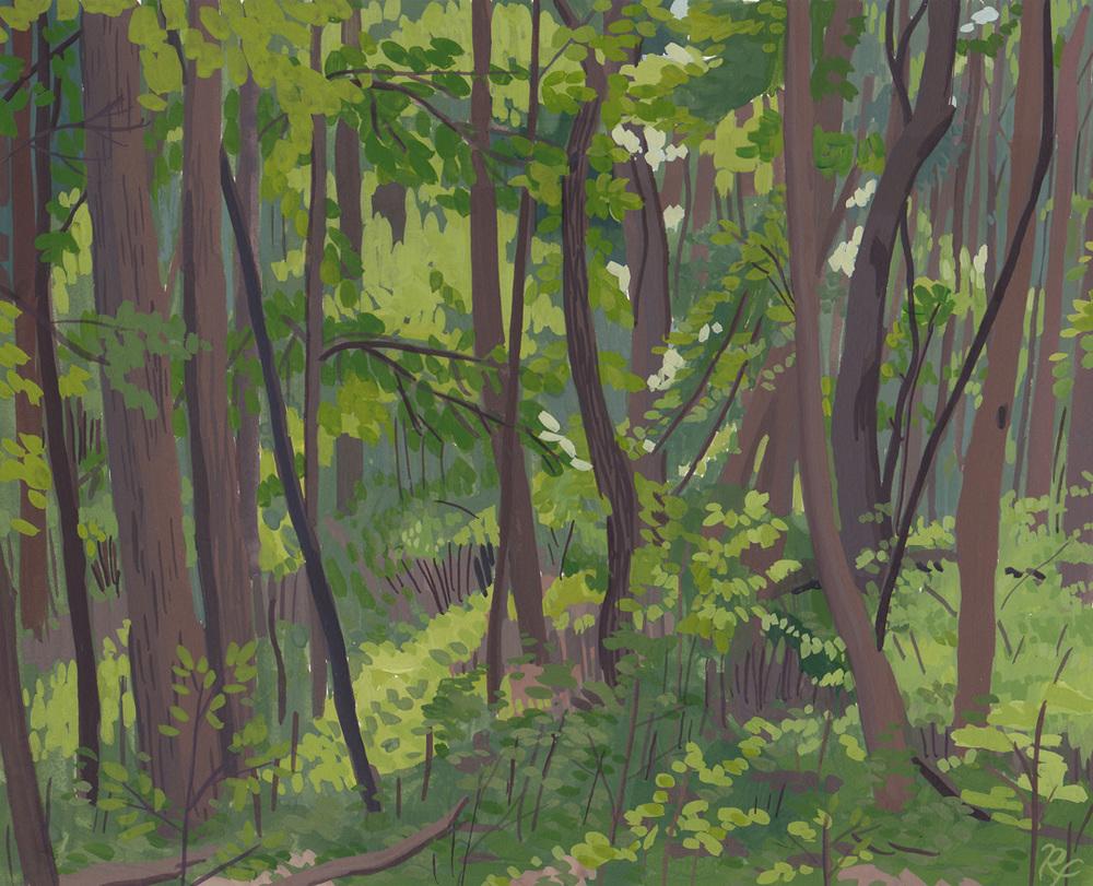 Sturgis Woods.jpg