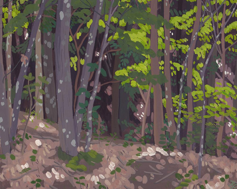 saugatuckwoods.jpg
