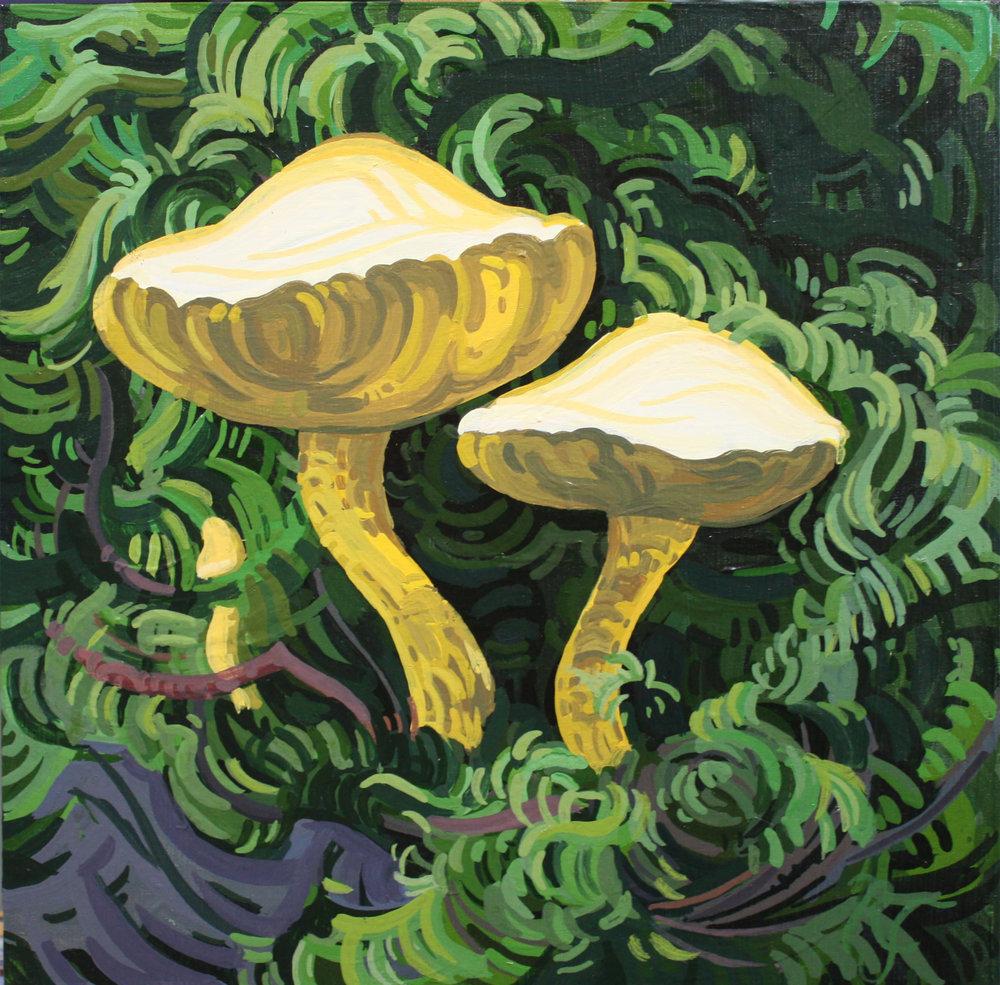 Little Mushroom III