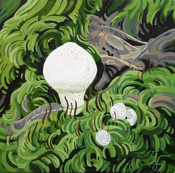 2.17.17Little Mushroom 22.jpg