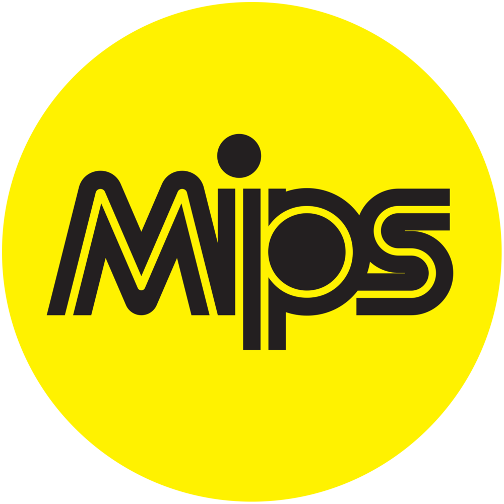 MIPS Protection