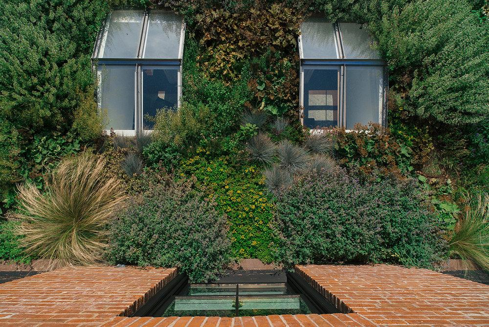 BK garden_9_150.jpg