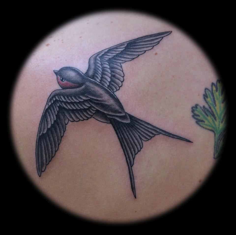 sparrow bg.jpg
