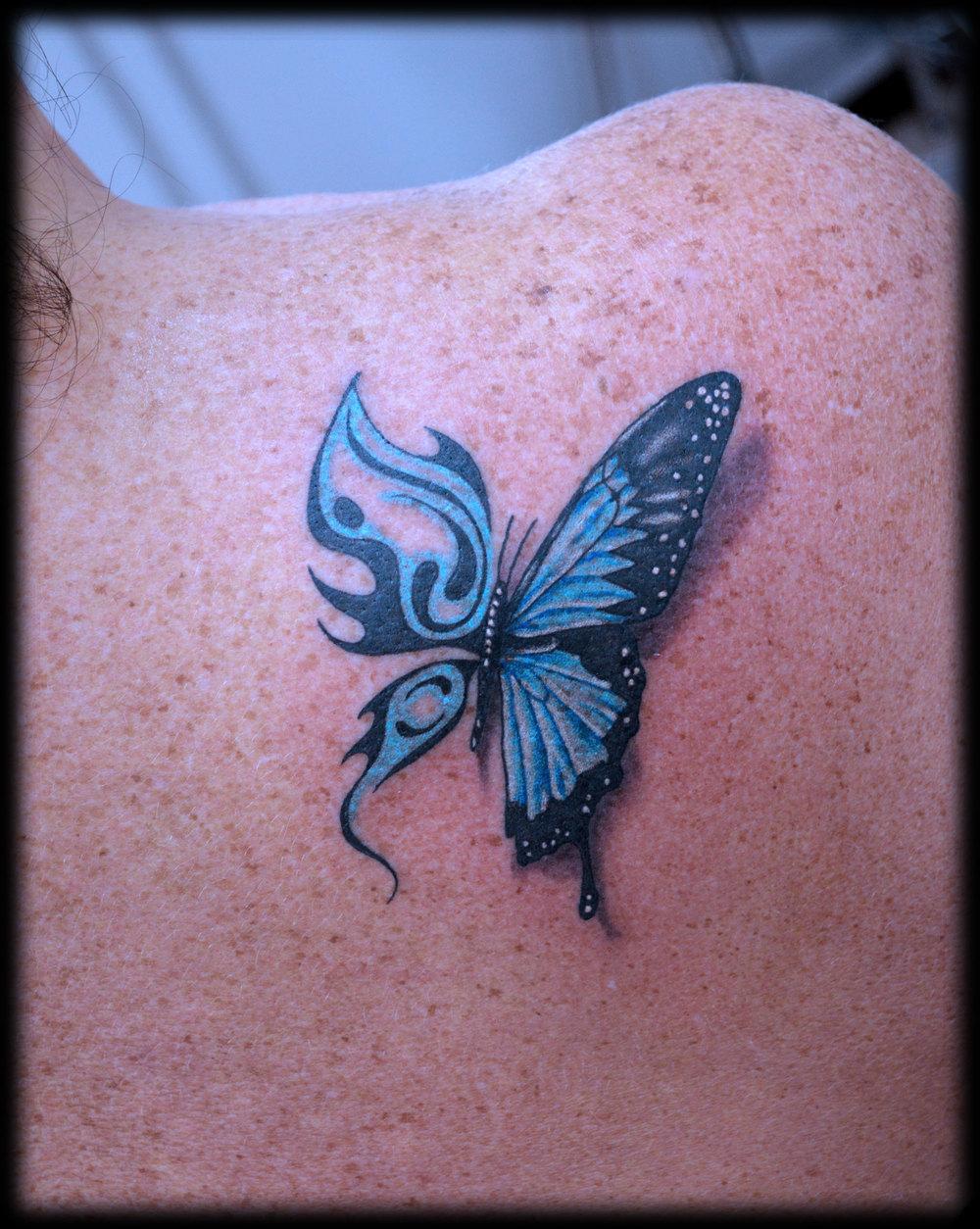butterfly-transform.jpg