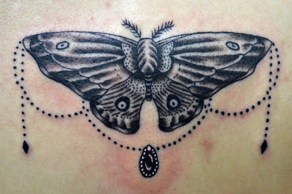 moth closeup.jpg