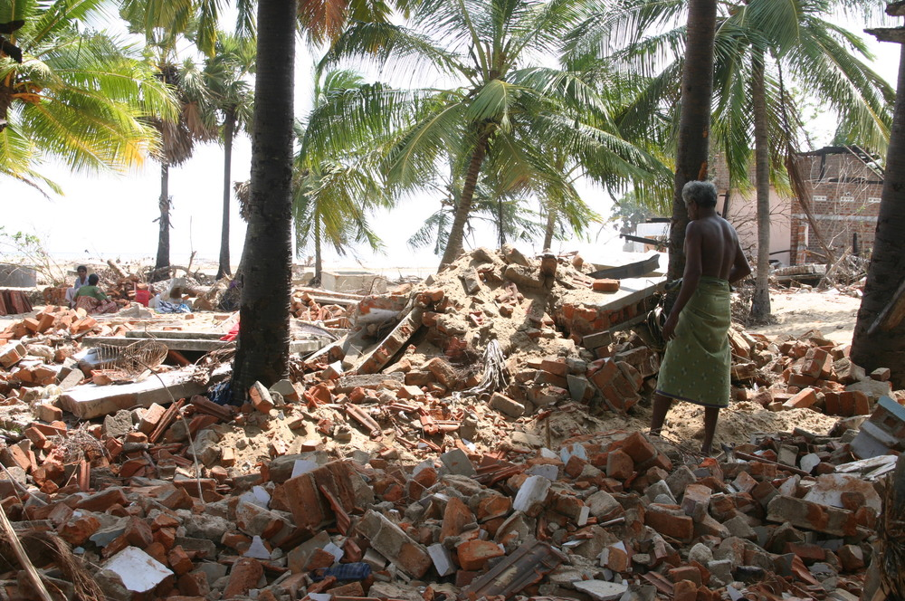 January 2005: Kallar