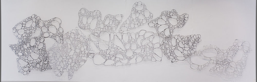Porous  2015 Approx. 5' x 15'