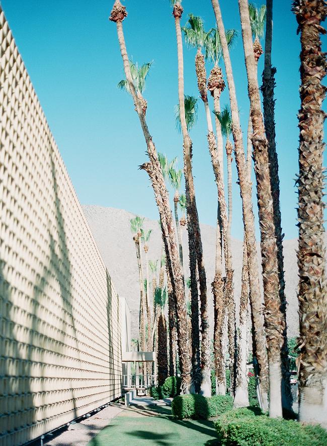 palmsprings006.jpg