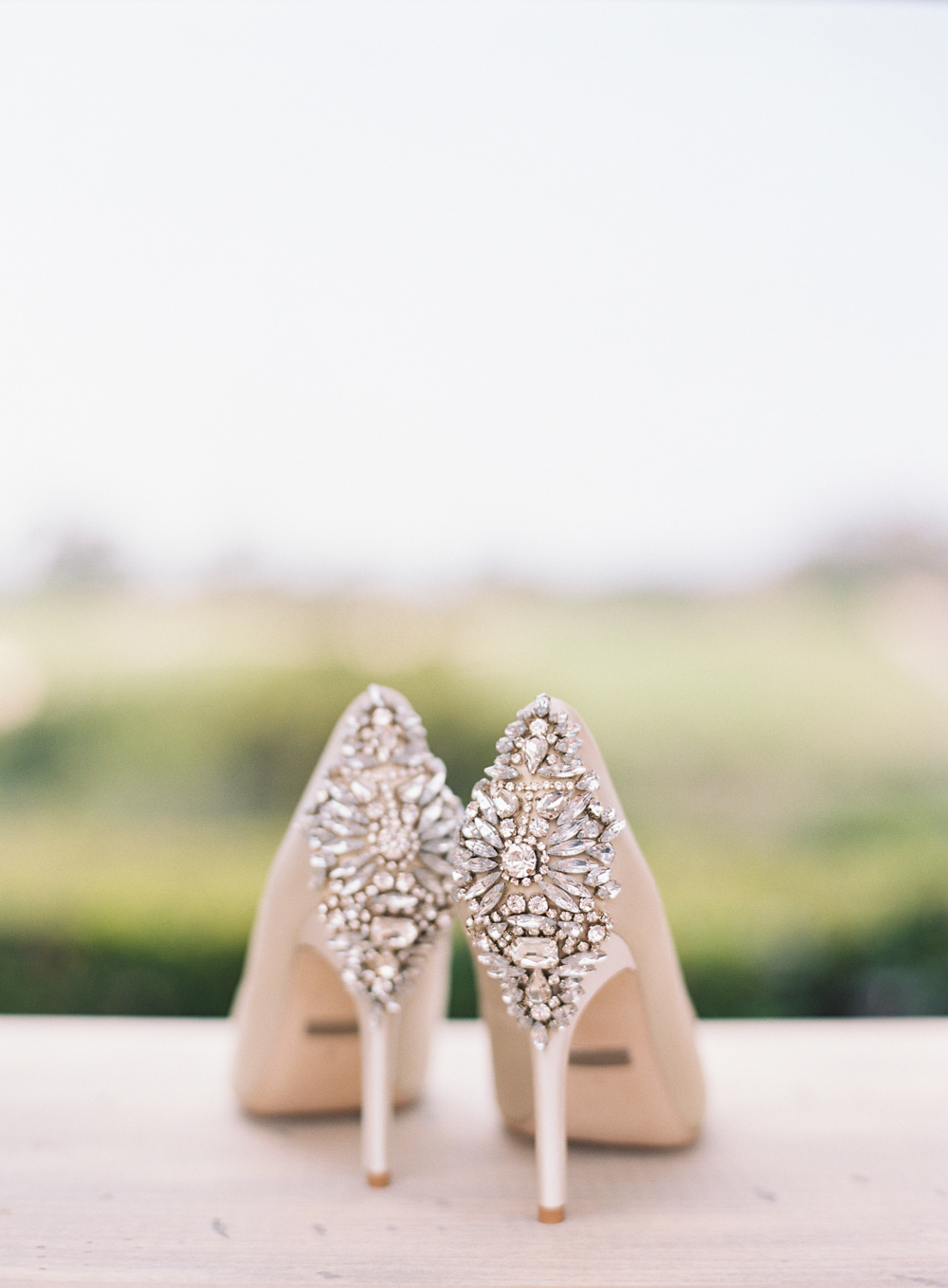 003-pelicanhill_wedding_ashleykelemen.jpg
