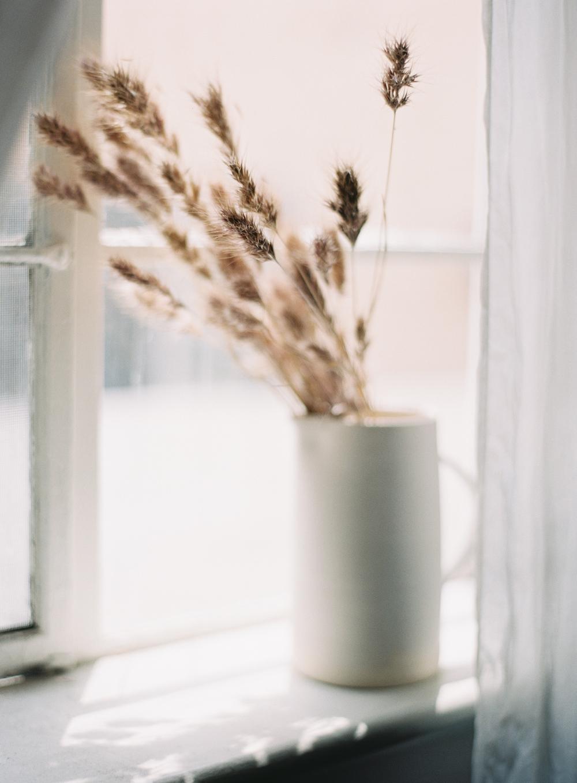 003-floralstudy_ashleykelemen.jpg