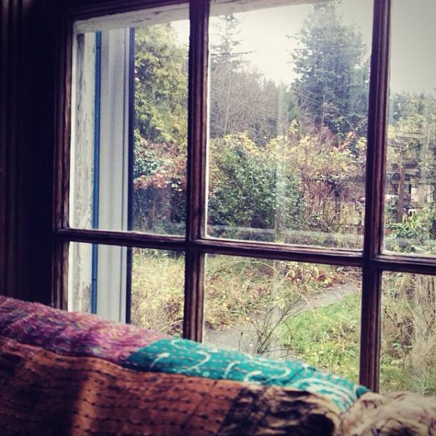 morning window.jpg